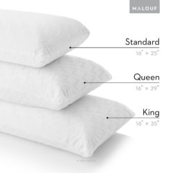 Z 100% Natural Talalay Latex Zoned Pillow Review